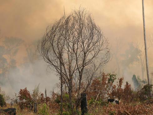 Amazon fire in Brazil, summer 2019.