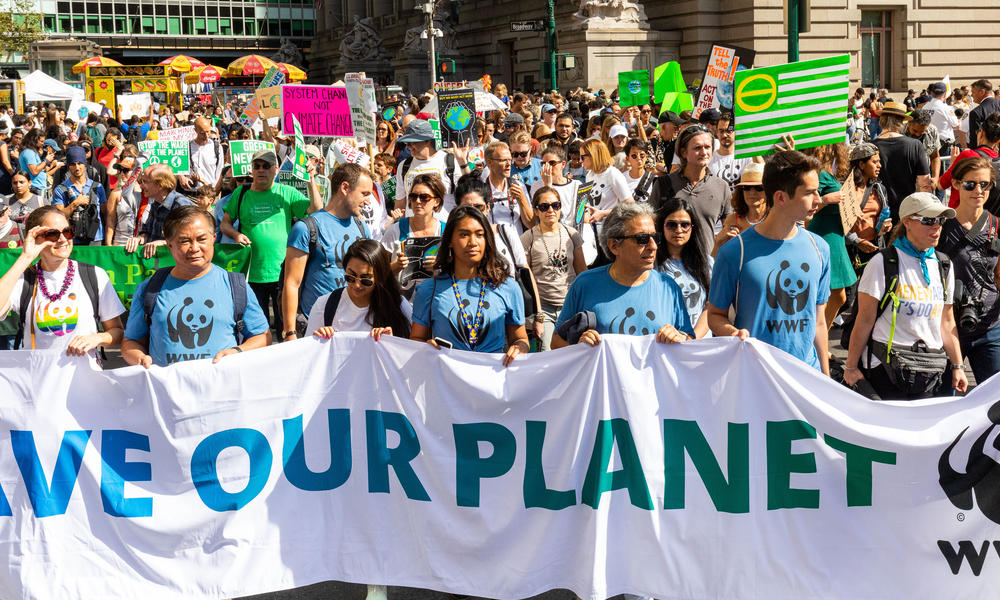 Activists march for climate action in New York City in 2019