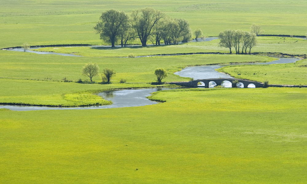 River in a grassland area, spanned by a roman bridge, Bosnia and Herzegovina