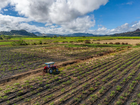 Sabhu Lal, a local farmer, tends to his sugar cane field while driving his tractor. Korovatu, Vanua Levu, Fiji.