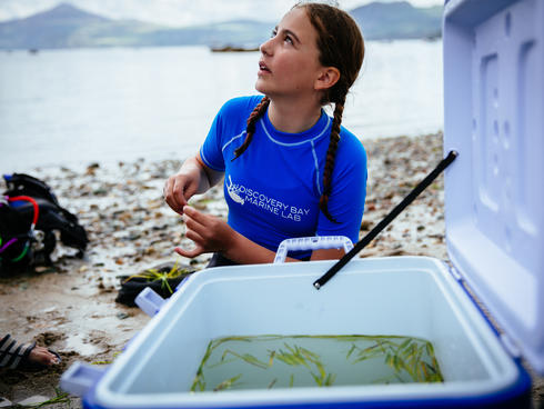 A volunteer stores seagrass in a cooler