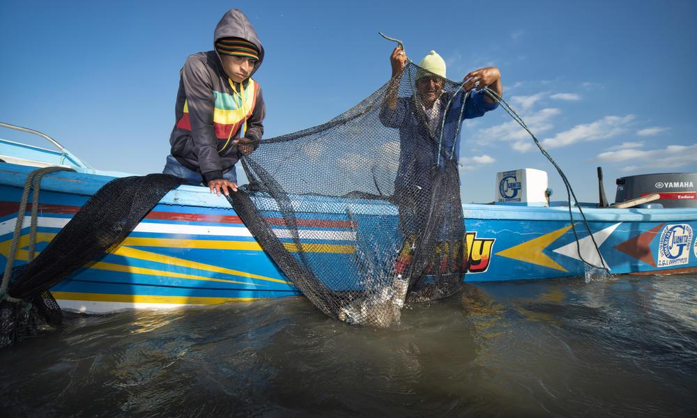 Pomada shrimp fishing near Isla Escalante, Ecuador.