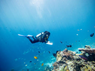 Gabby Ahmadia, senior marine scientist at WWF, surveys a reef in the Selat Dampier MPA, Raja Ampat, West Papua, Indonesia