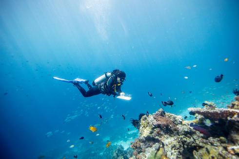 Gabby Ahmadia, senior marine scientist at WWF, surveys a reef in the Selat Dampier MPA, Raja Ampat, West Papua, Indonesia