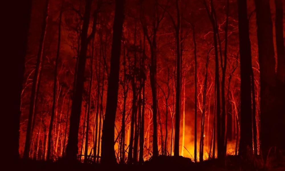 Australian bushfire in Bowraville NSW