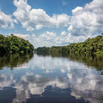 Luilaka River in Salonga National Park