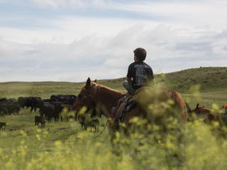 Riding a horse in Nebraska, United States