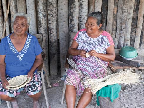 Pantanal weavers