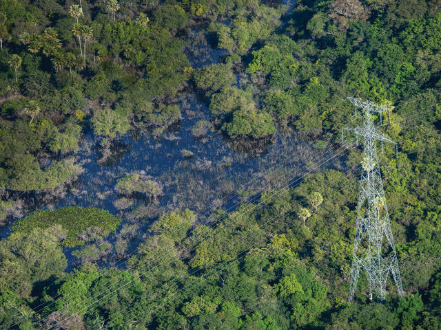 Power lines over Pantanal