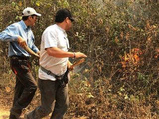 WWF staff look at damage from fires in Bolivia