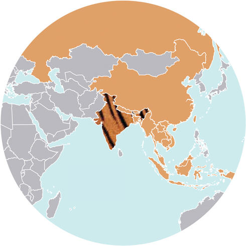World map of Tigers
