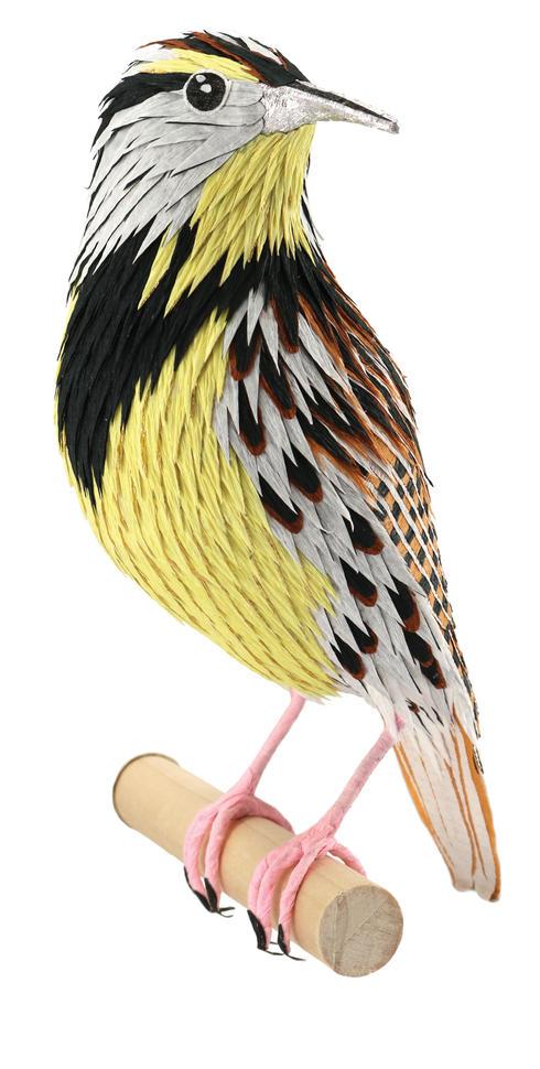 Meadowlark No 2
