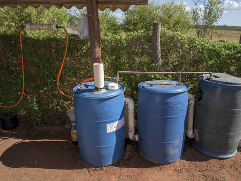 Rain barrels to collect water for school garden