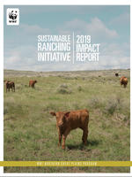 Sustainable Ranching Initiative Impact Report: 2019 cover
