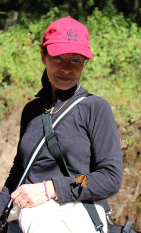 Monica Echevarria Headshot