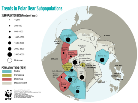 Polar Bear Population Update Map 2019