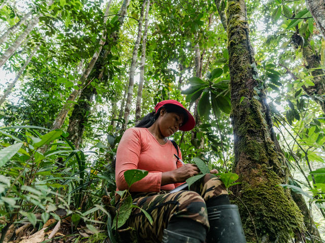 Chela Umire makes notes during a forest assessment