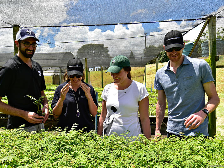 Staff from WWF and International Paper at a tree nursery in Mogi Guacu