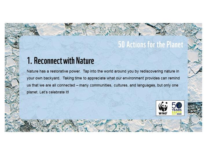 Action 1: Reconnect with nature
