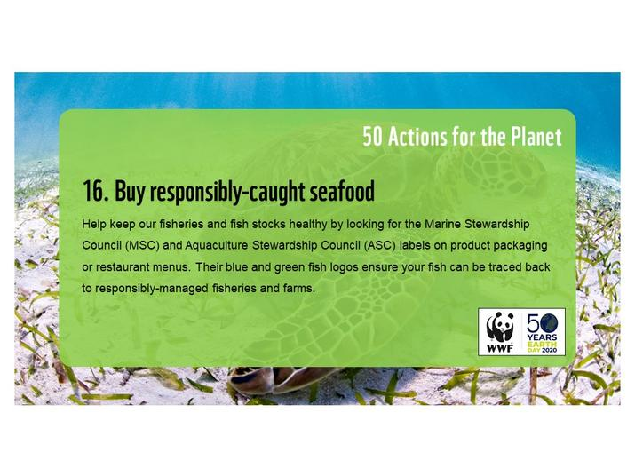 Action 16: Buy responsibly-caught seafood