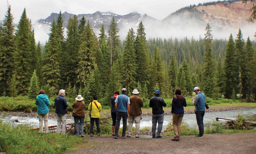 Travelers Yellowstone