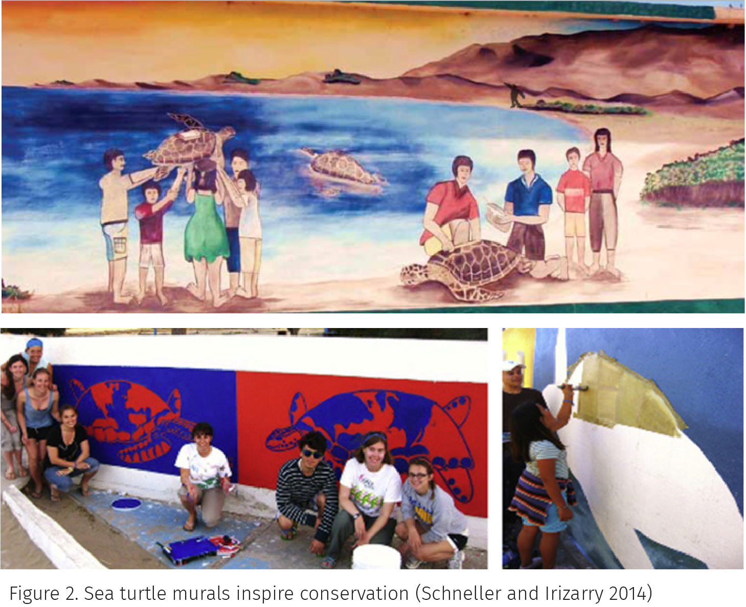 Figure 2. Sea turtle murals inspire conservation (Schneller and Irizarry 2014)