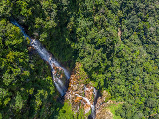 Aerial view of forest in Peru