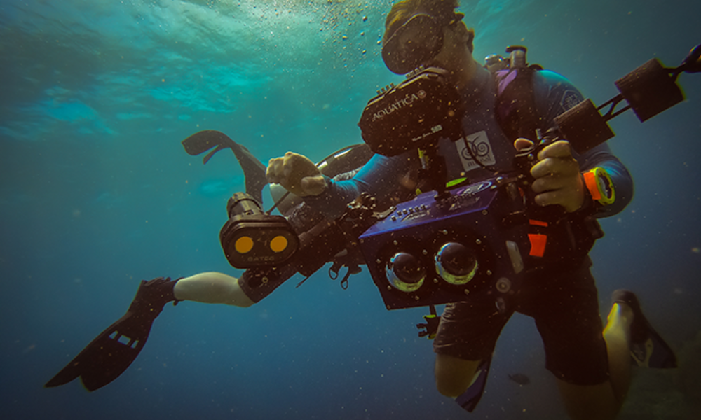 Male scuba diver with an underwater camera descending into the water