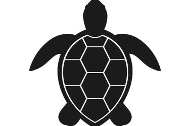 graphic icon of a marine turtle colored dark grey