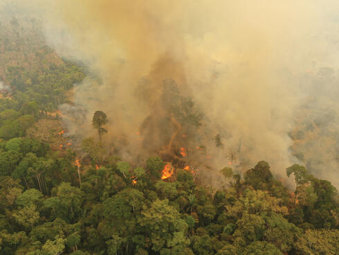 Ariel view of forest fire line with smoke