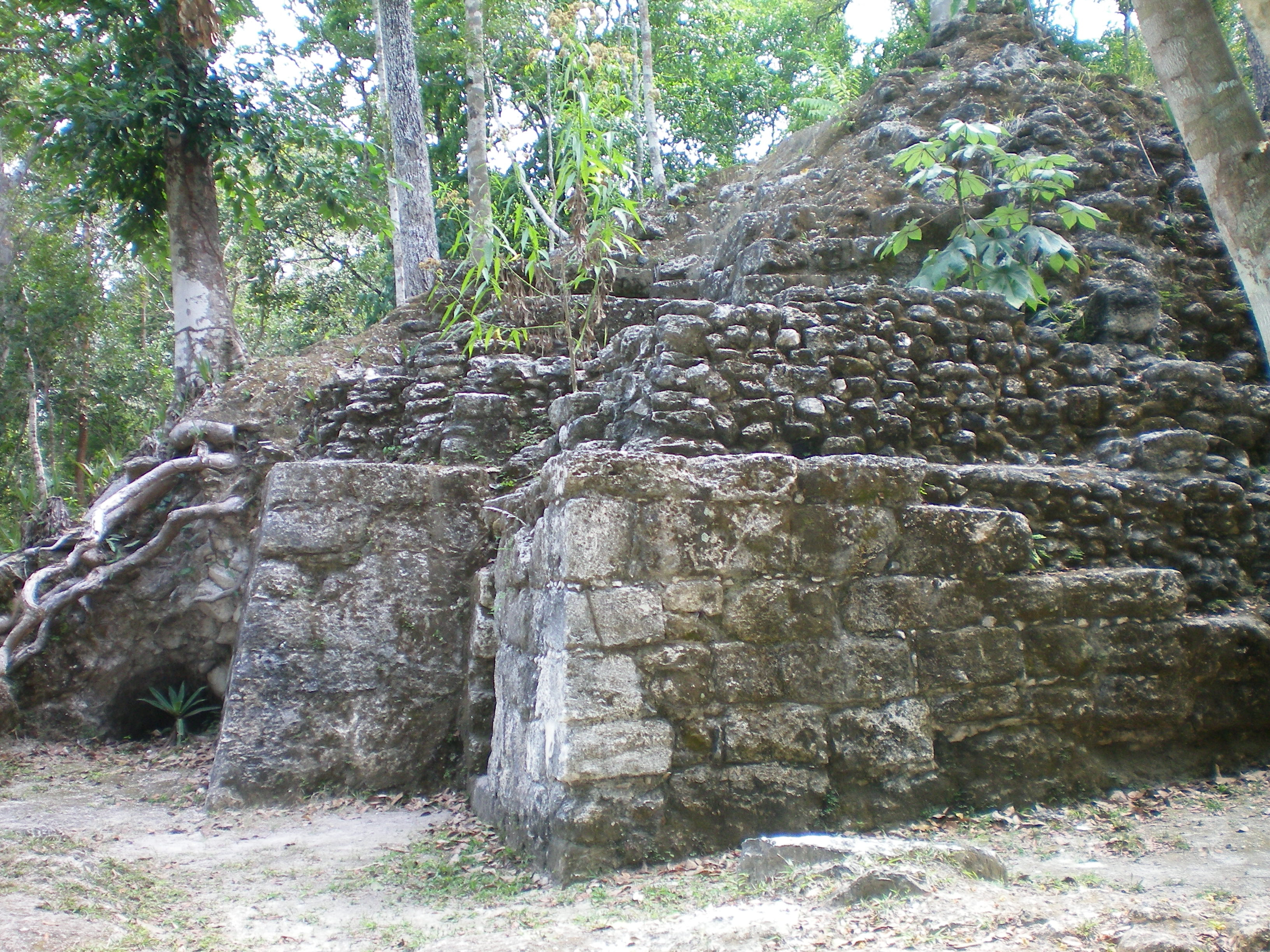 A stone architecture in the forest at Uaxactún Archeology Site in Guatemala
