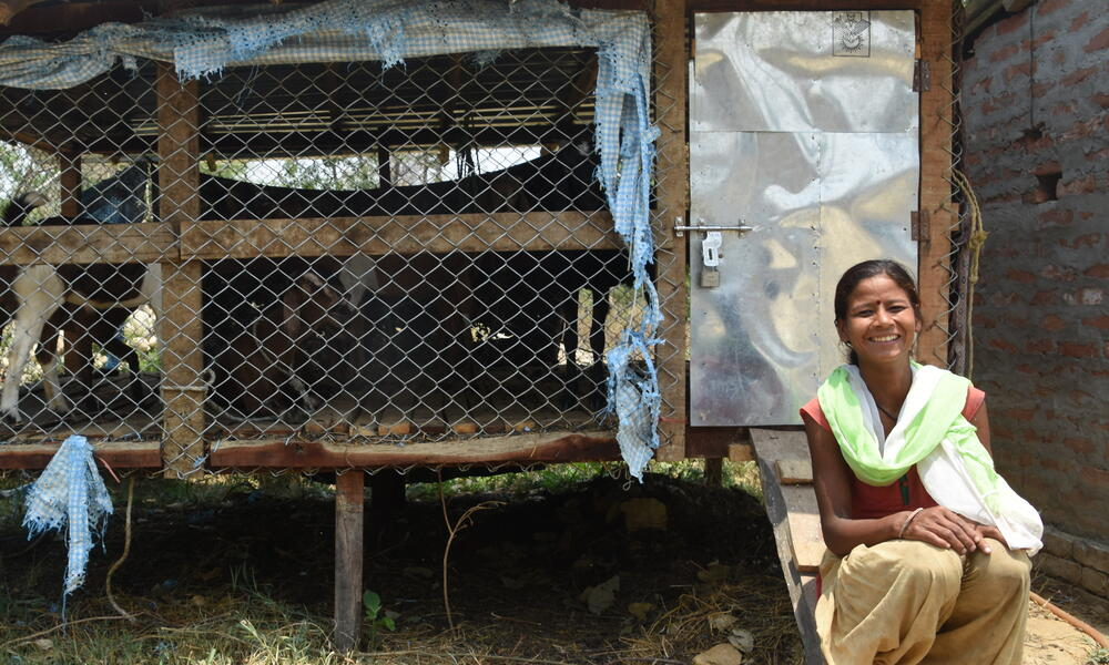 Woman in front of pen of goats in Khata corridor, Nepal