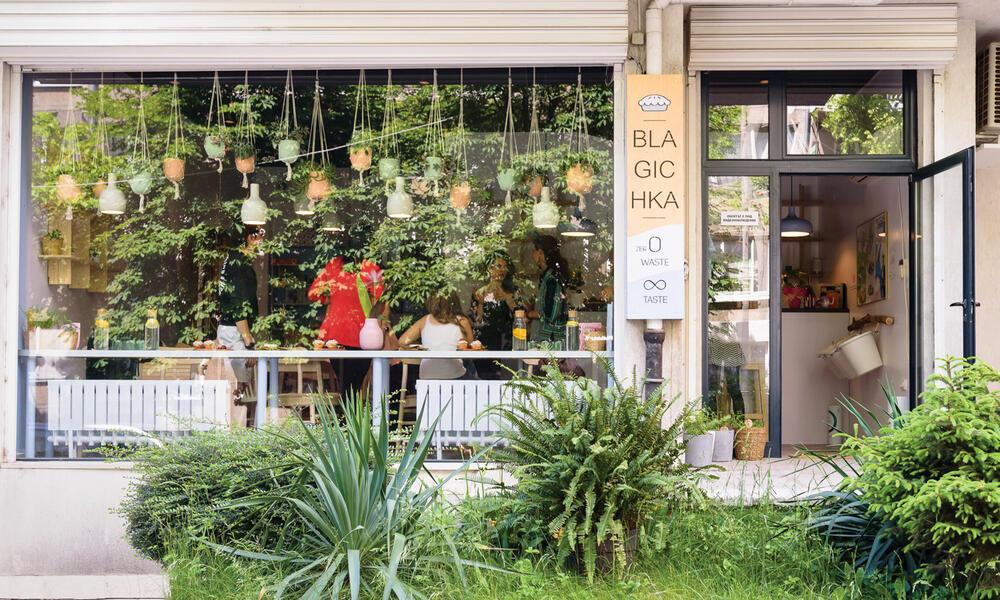 Bulgaria restaurant window with hanging plants