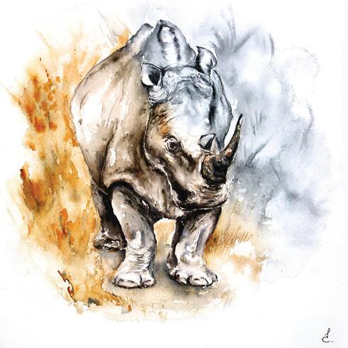 Painting of rhino