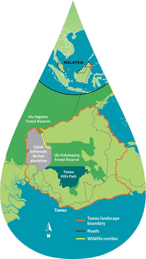 Map of Sabah area shaped like droplet