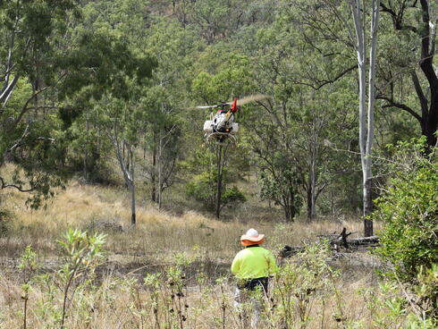 View from behind of a man flying a drone low to the ground among trees