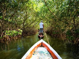 rear view of a man standing up in a small boat pulling another boat along through a mangrove forest
