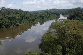 Jarí River