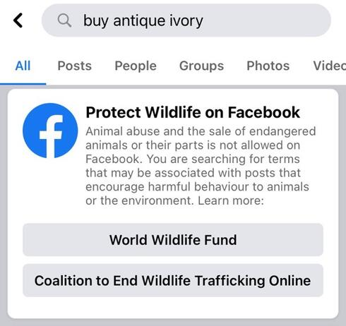 A picture of a Facebook pop up that allows users to help report endangered animals on Facebook through the in-app reporting feature