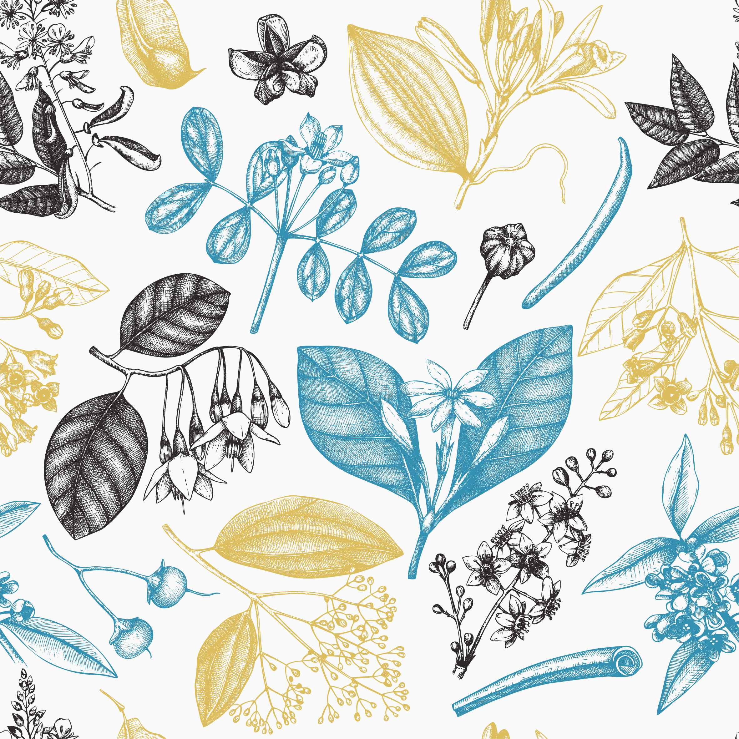 A soft pencil sketch of different wild plants in muted yellow, blue, and black on a white background.