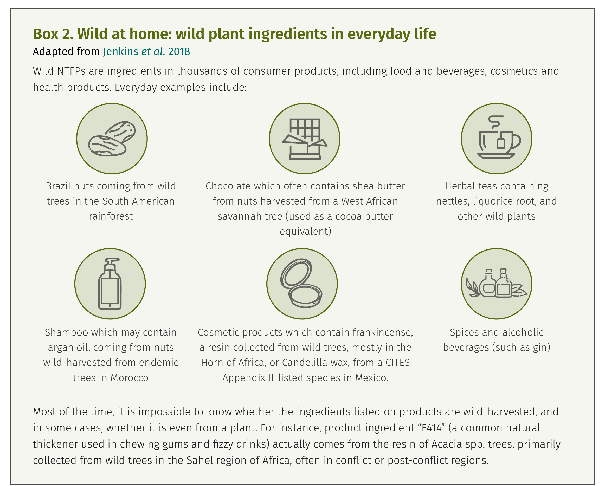 Box 2. Wild at home: wild plant ingredients in everyday life
