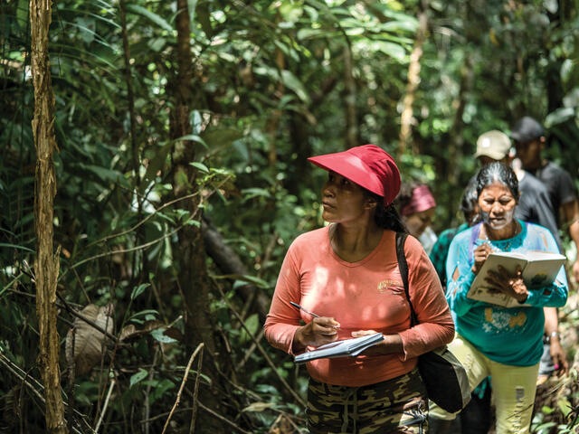 Women walking through forest