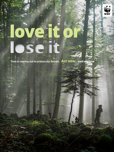 PSA: Image of a forest with the line 'love it or lose it'