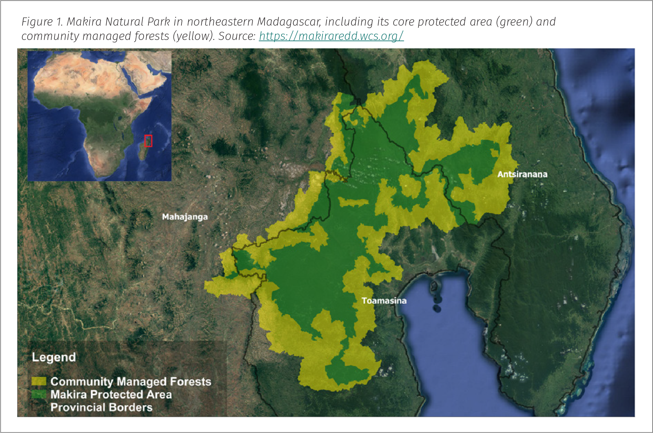 Figure 1. Makira Natural Park in northeastern Madagascar, including its core protected area (green) and community managed forests (yellow)