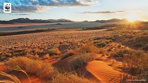 Namibia desert sunrise