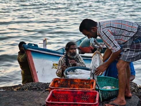 A fisher stands over a red basket at the water's edge sorting the catch of the day