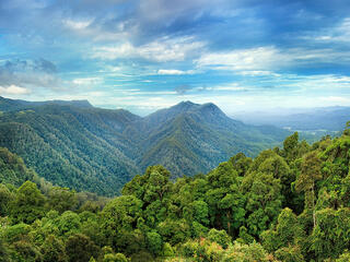 A wide angle shot of a lush forest over mountain ridges