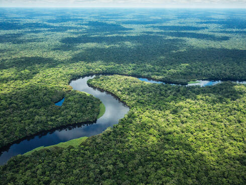 Aerial photo of river bend in forest