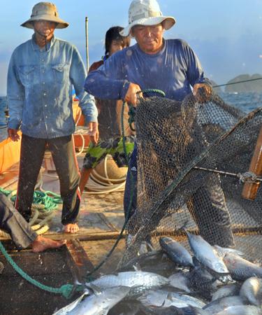 Fishermen unloading catch