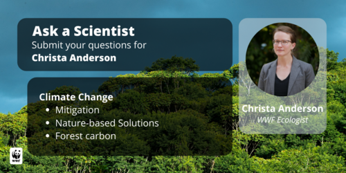 Ask A Scientist panel image featuring Christa Anderson